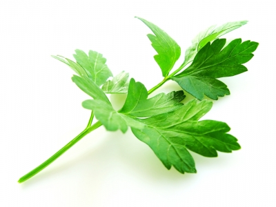 Parsley: Health Benefits Of Parsley